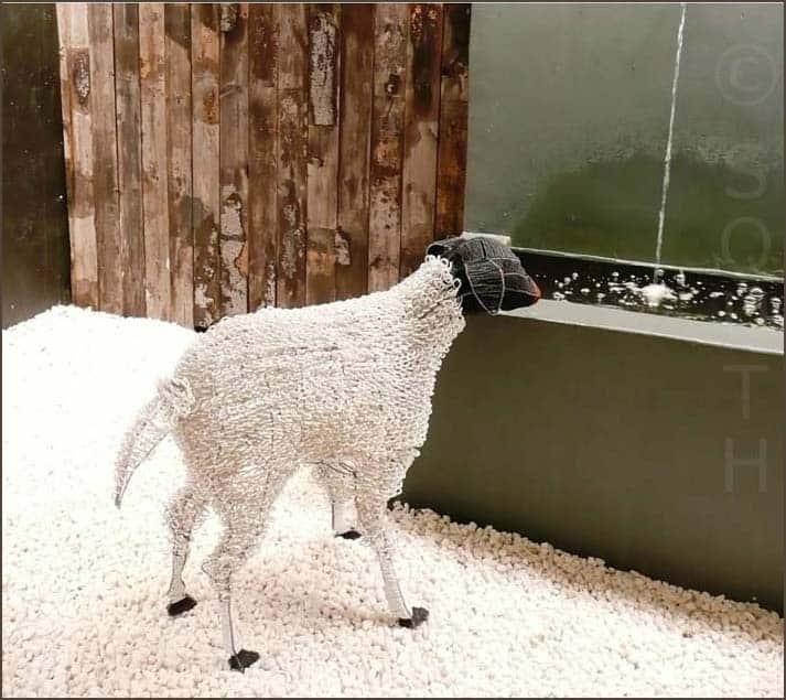 Art_wirework_karoo_sheep_Streetwires