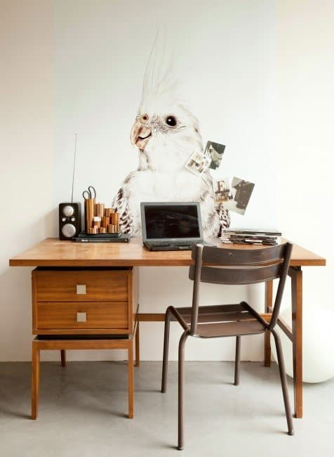 Nouss concept store online ♥ shop de allerhipste must haves!