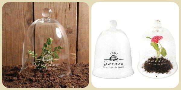 Kweekklok van glas – Esschert Design Garden