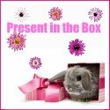 present_in_the_box_hippeshops