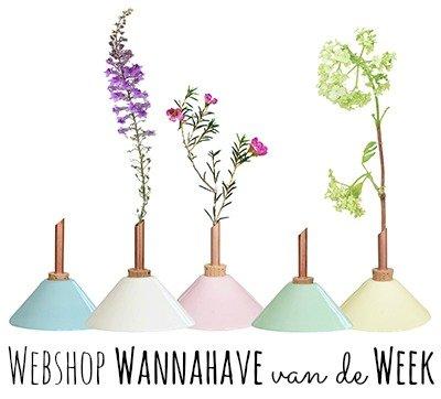 Consilium Vaasjes – Webshop Wannahave van de Week