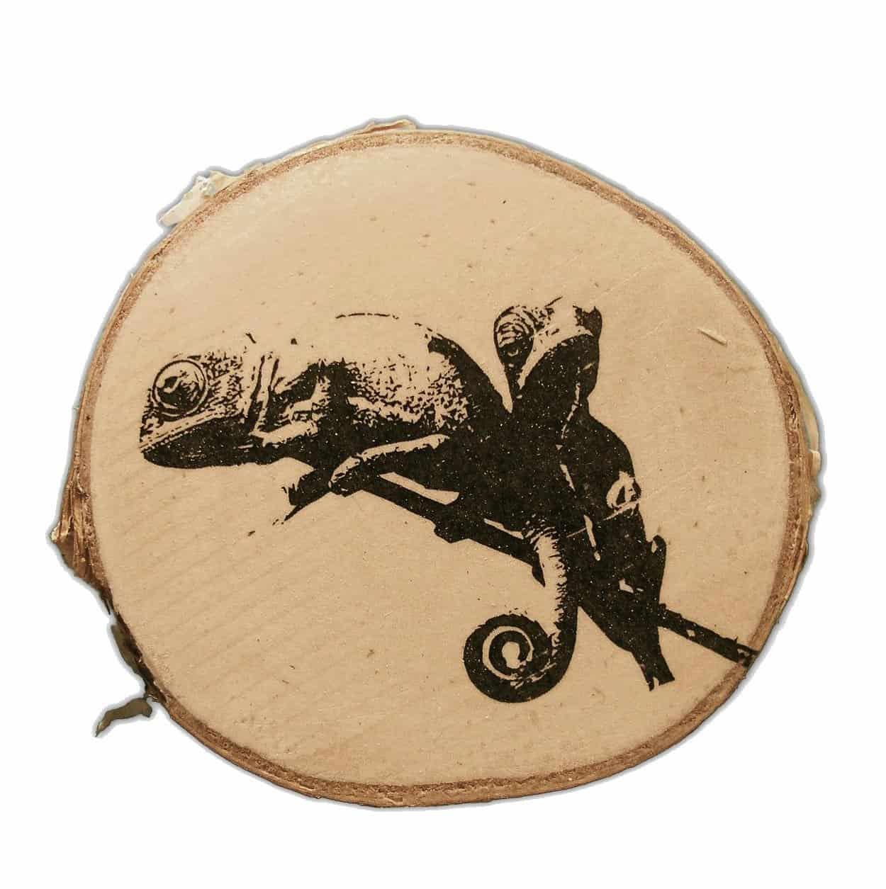 Kameleon op houten schijf twv €35 | Goodiebox Deluxe 2016