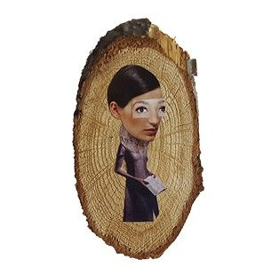 artwork-annet-scholten-illustration-women-leukehebbies-hippeshops