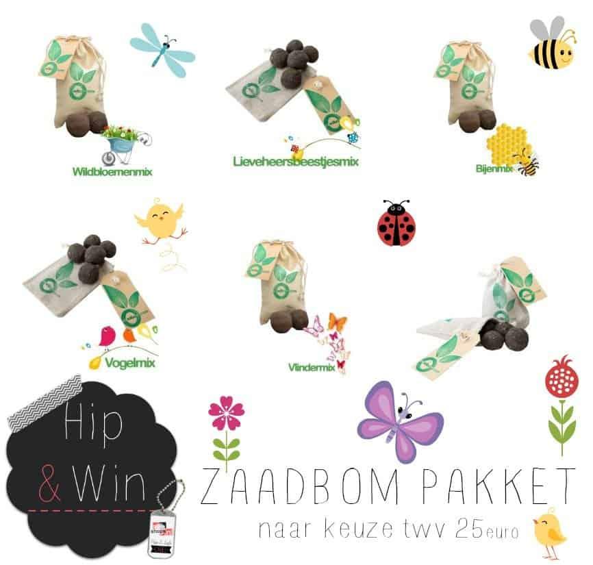 WIN: Zaadbom Pakket (twv €25) en creëer je eigen bloemenzee