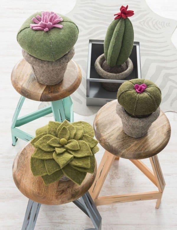 vilten cactussen