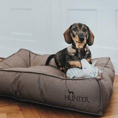 Hunter hondenbed Lancaster