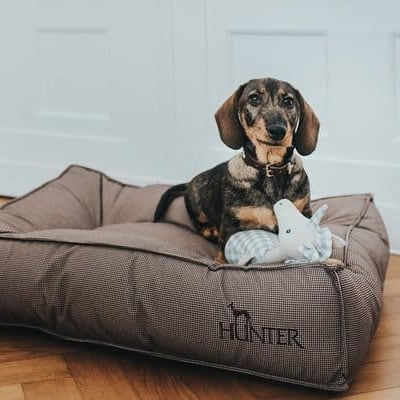 hondenbed lancaster