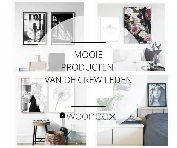 De woonboX - elk seizoen een nieuwe verrassingsdoos vol fijne woonaccessoires en trendy spullen