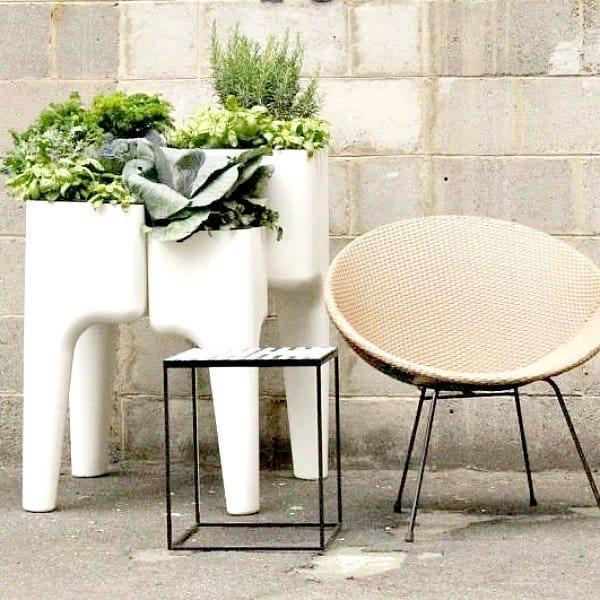 Deze modulaire plantenbak kun je op elke gewenste manier neerzetten en is ideaal als moestuin en kruidentuin [Plantenbak.com]