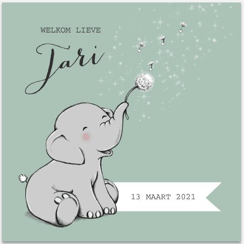 Vrolijk geboortekaartje jongen met olifantje en wensbloem - MyCards.nl - HippeShops.nl