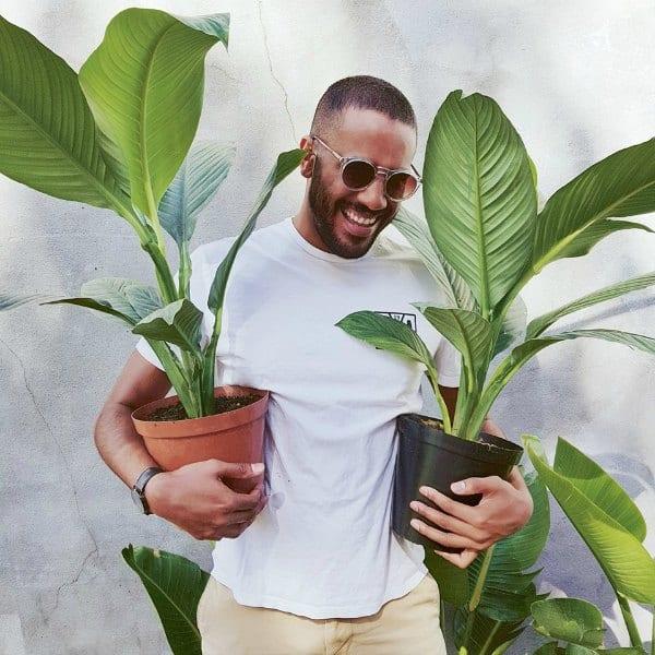 Green bubble stoere mannen planten