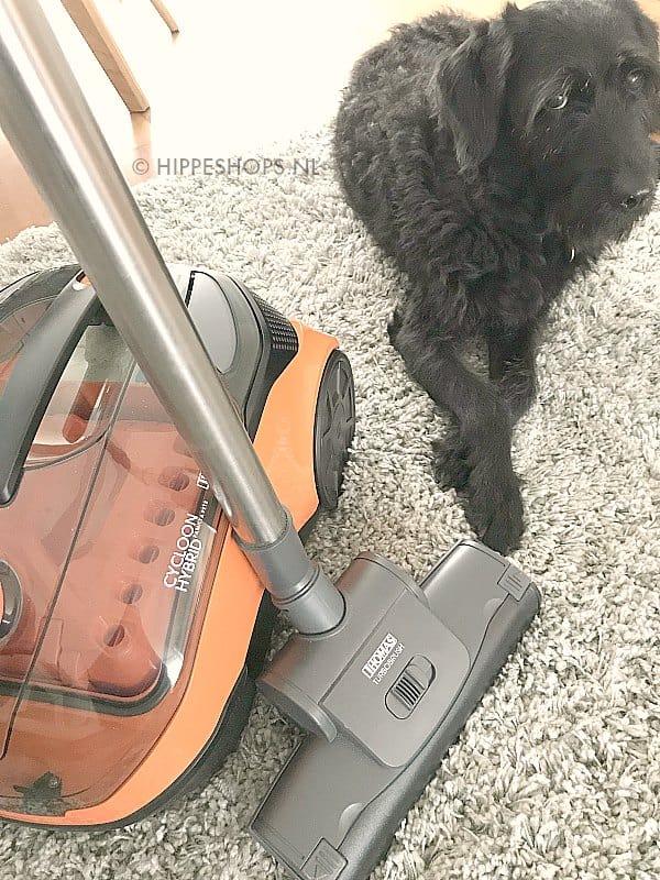 Ook uit hoogpolig tapijt worden hondenharen moeiteloos verwijderd