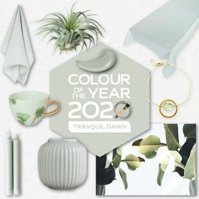 Tranquil Dawn Flexa kleur van het jaar 2020 trendkleur shopping inspiratie