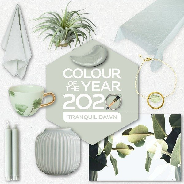 tranquil dawn flexa colour of the year 2020 dulux