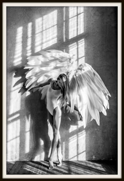 Online Poster Kopen: angel wings