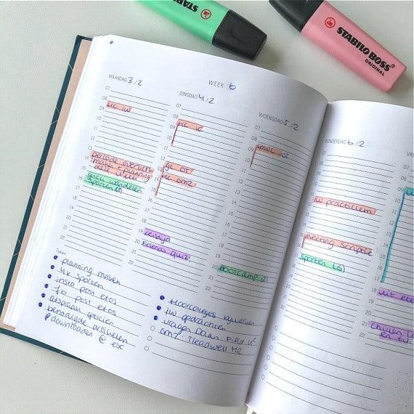 structuurjunkie planner studeren