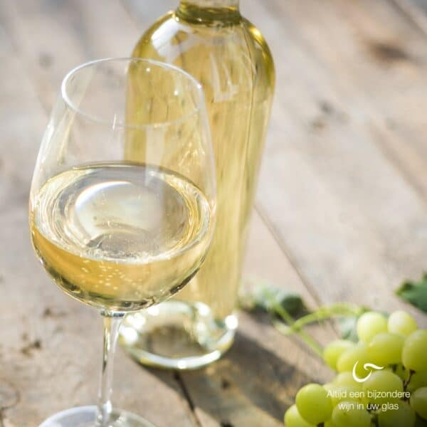 droge witte wijn chardonnay sauvignon blanc
