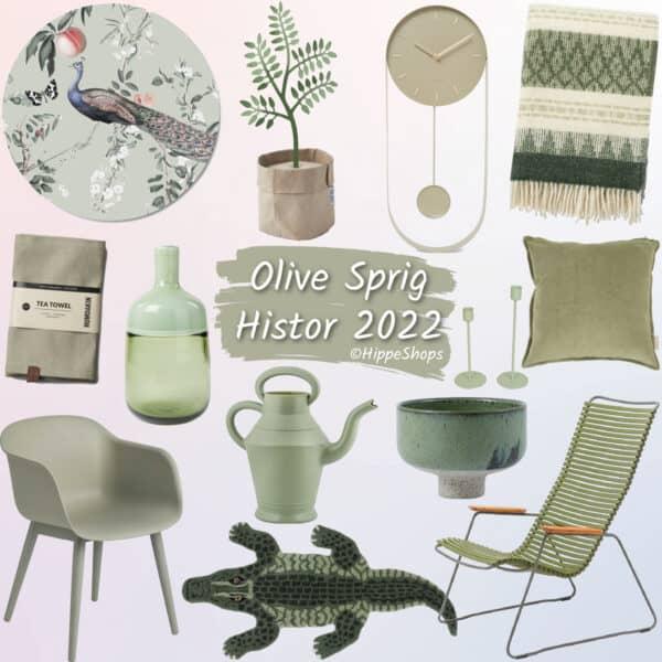 Histor 2022 Olive Sprig
